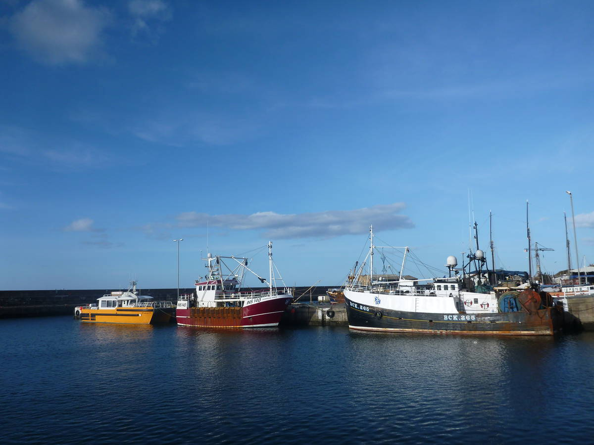 Harbour de Buckie
