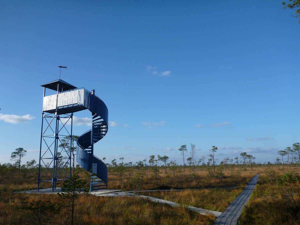 Une tour d'observation pour la tourbière