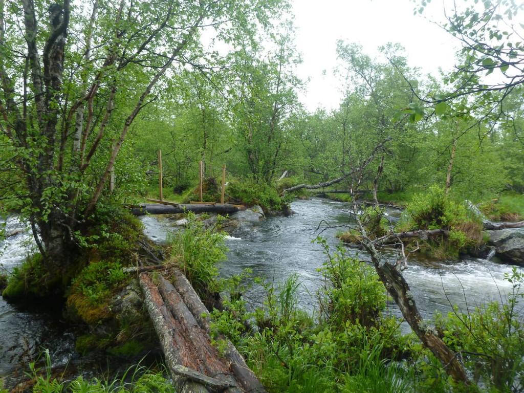 Des rivières à traverser