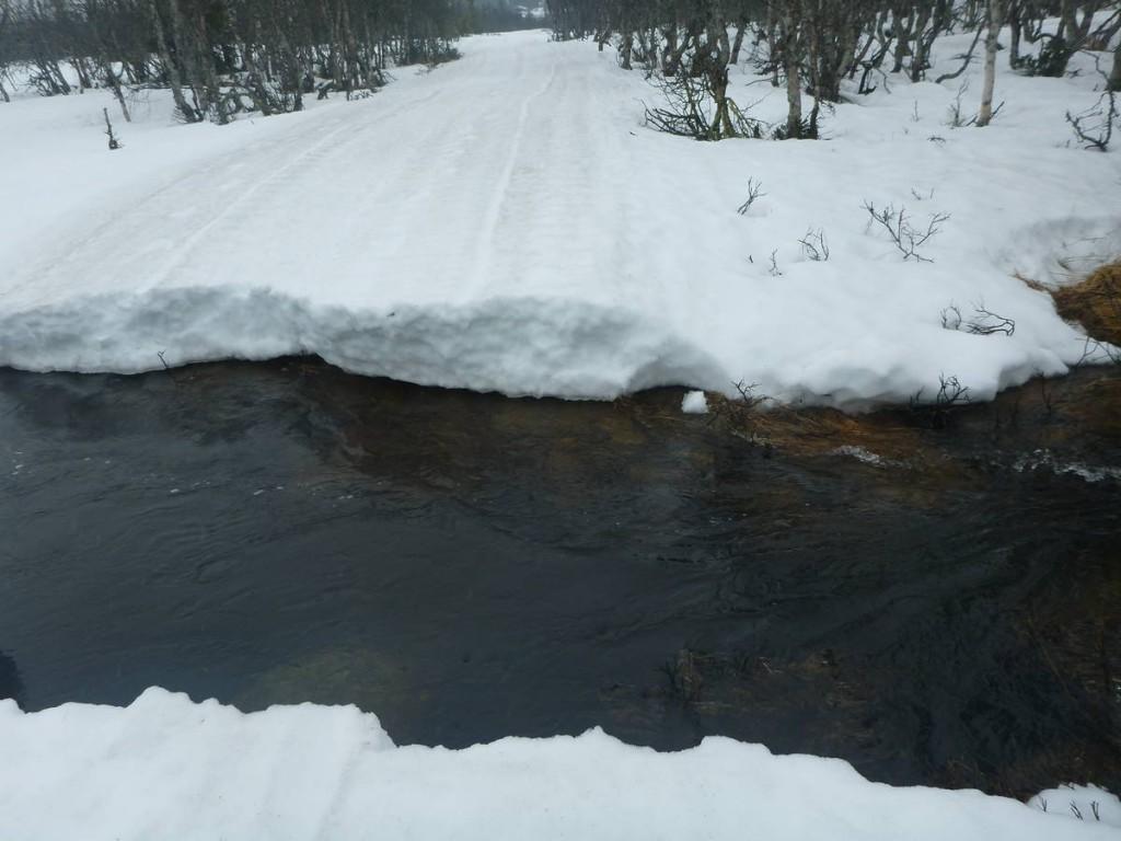 Premier obstacle : Une rivière assez profonde. Pas le choix il faut sauter