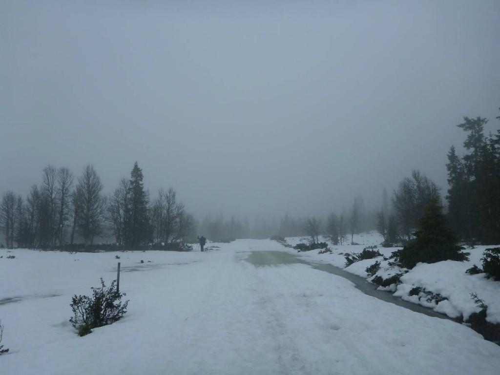 Marécages de neige ayant différentes profondeur assez traîtres