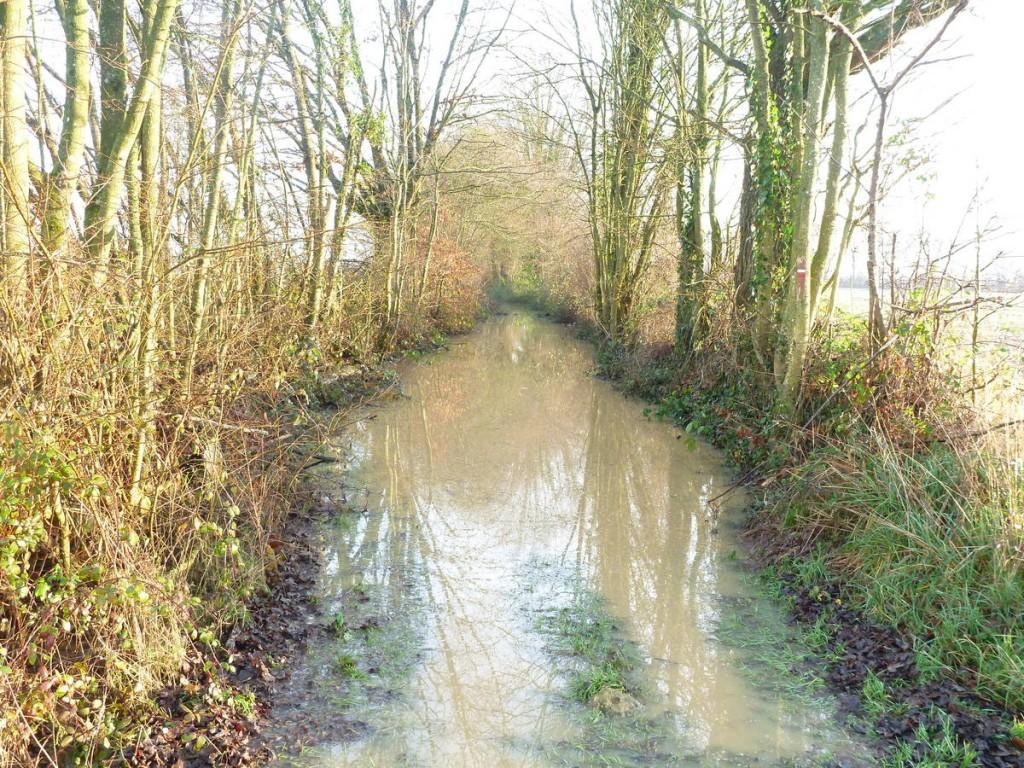 Quelque fois, les chemins ressemblent à des rivières