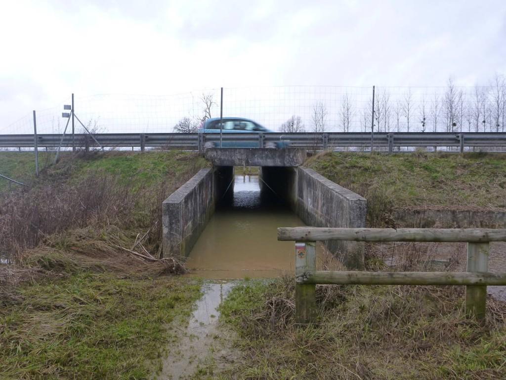 Passage difficile sous une autoroute inondée