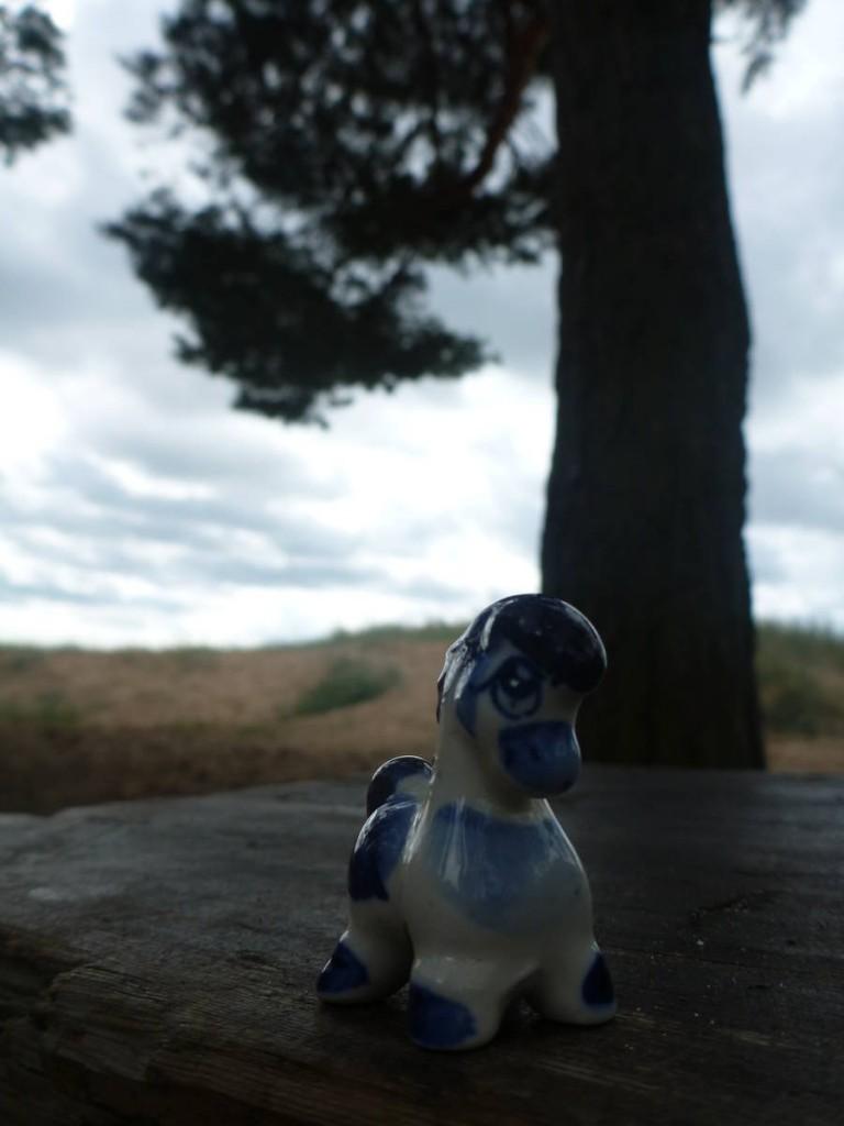 Cadeau de la babouchka : « Lorsque tu n'auras plus de force pour continuer, lorsque le doute t'envahiras, tu n'auras qu'à monter sur ce petit poney afin qu'il te porte »
