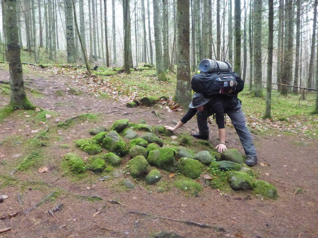 Pierres d'énergie de la forêt de Pokaini