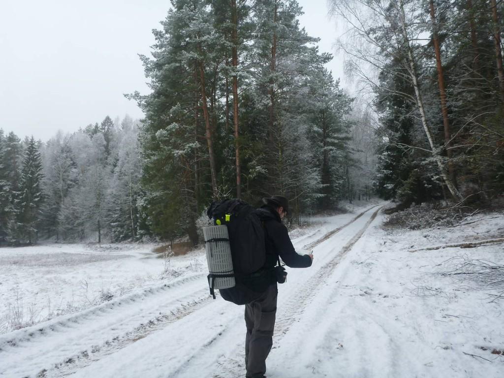 Les chemins dans les forêts sont à chaque fois de vrais labyrinthes