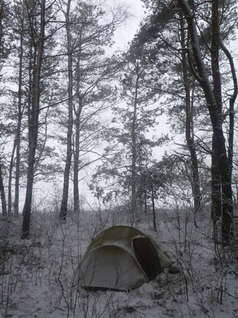 Je me réfugie dans les sous bois à la tombée du jour