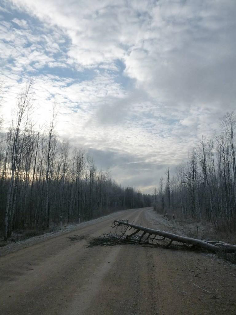 Marche sur une piste interdite à la frontière de la Biélorussie