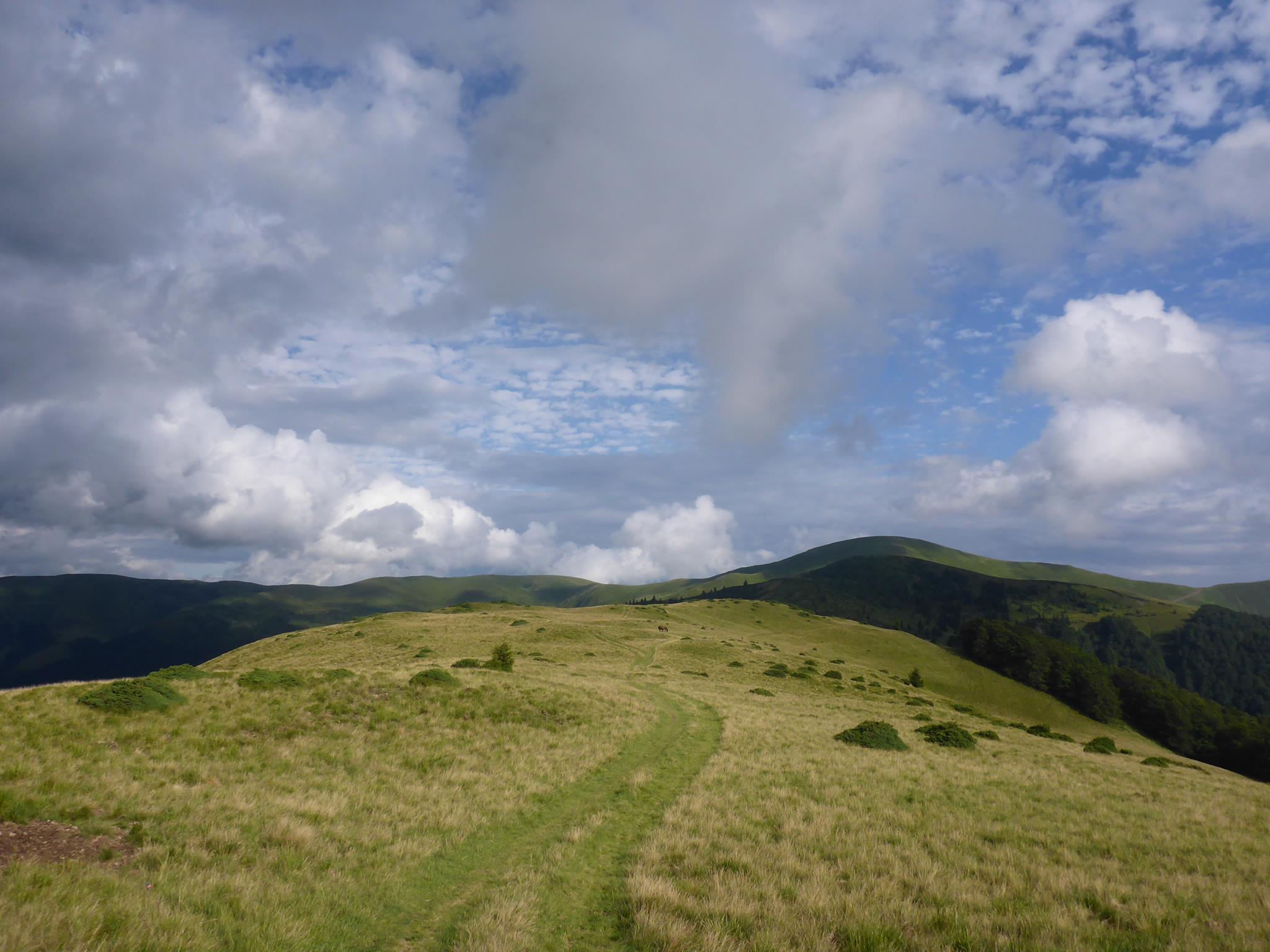 Après trois heures de grimpe à travers une montagne sans sentier j'arrive sur la crête. Les trois jours qui suivront seront les plus beaux et les plus immersifs depuis ma reprise il y a deux mois