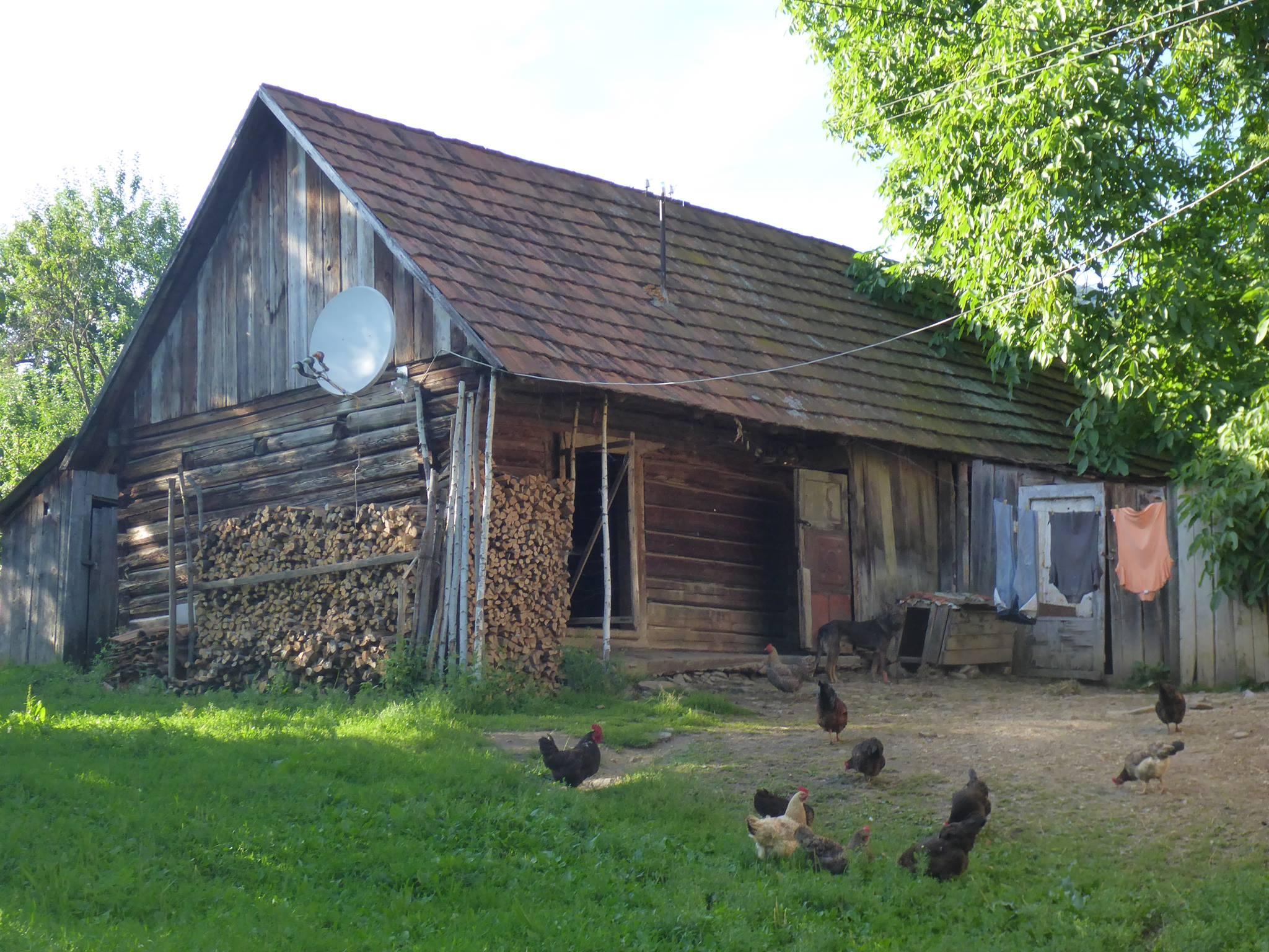De partout dans les villages les poules sont en liberté