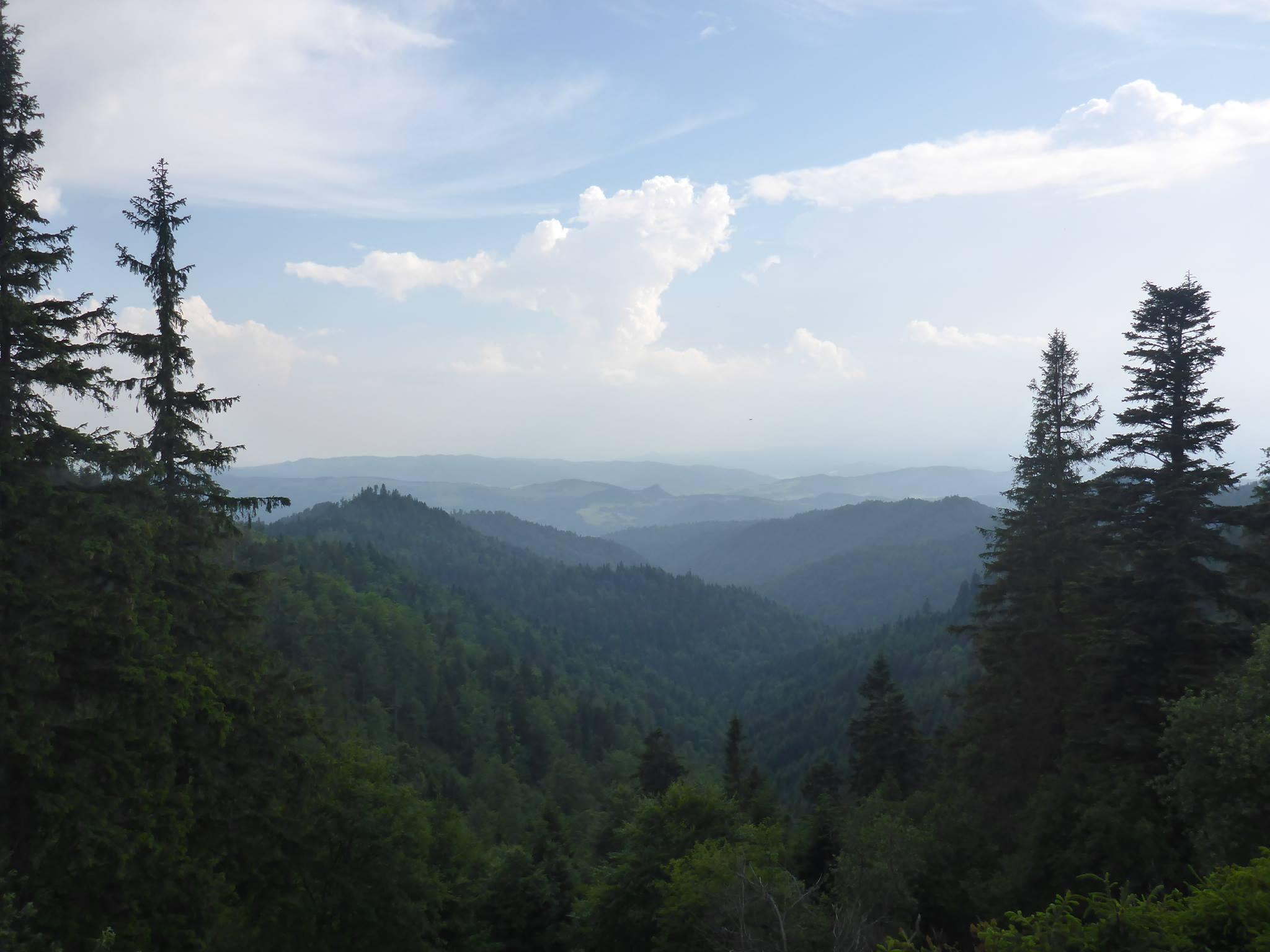 Les montagnes ne dépassent rarement les 1000 mètres mais j'en gravis plusieurs par jour