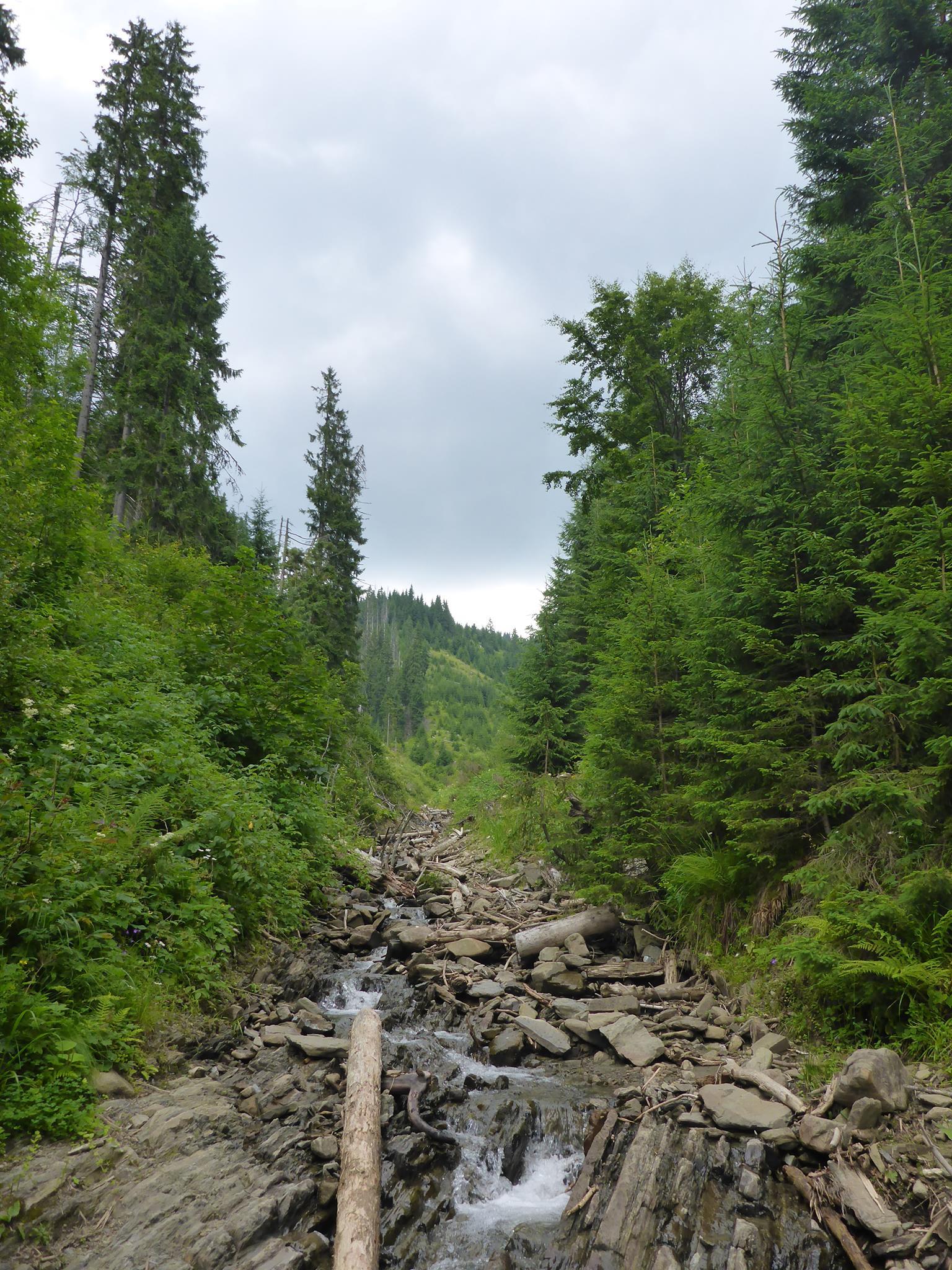 Beaucoup de militaires patrouillent sur la frontière de la Roumanie; j'arrive à me faufiler discrètement puis descend la montagne le plus vite possible jusqu'à arriver à ce petit ruisseau qui me dissimulera pendant une heure