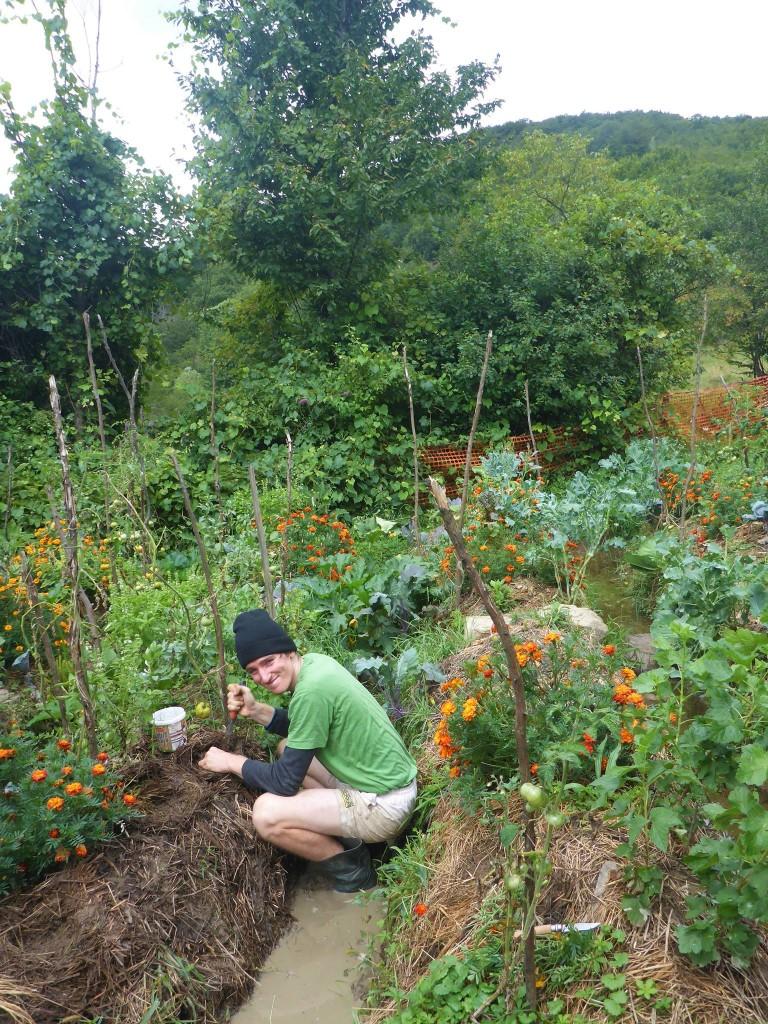 Le jardin est fait de telle sorte qu'il n'y a jamais besoin de l'arroser. Un système de tranchées en pente douce récupérant l'eau de pluie s'en occupe.