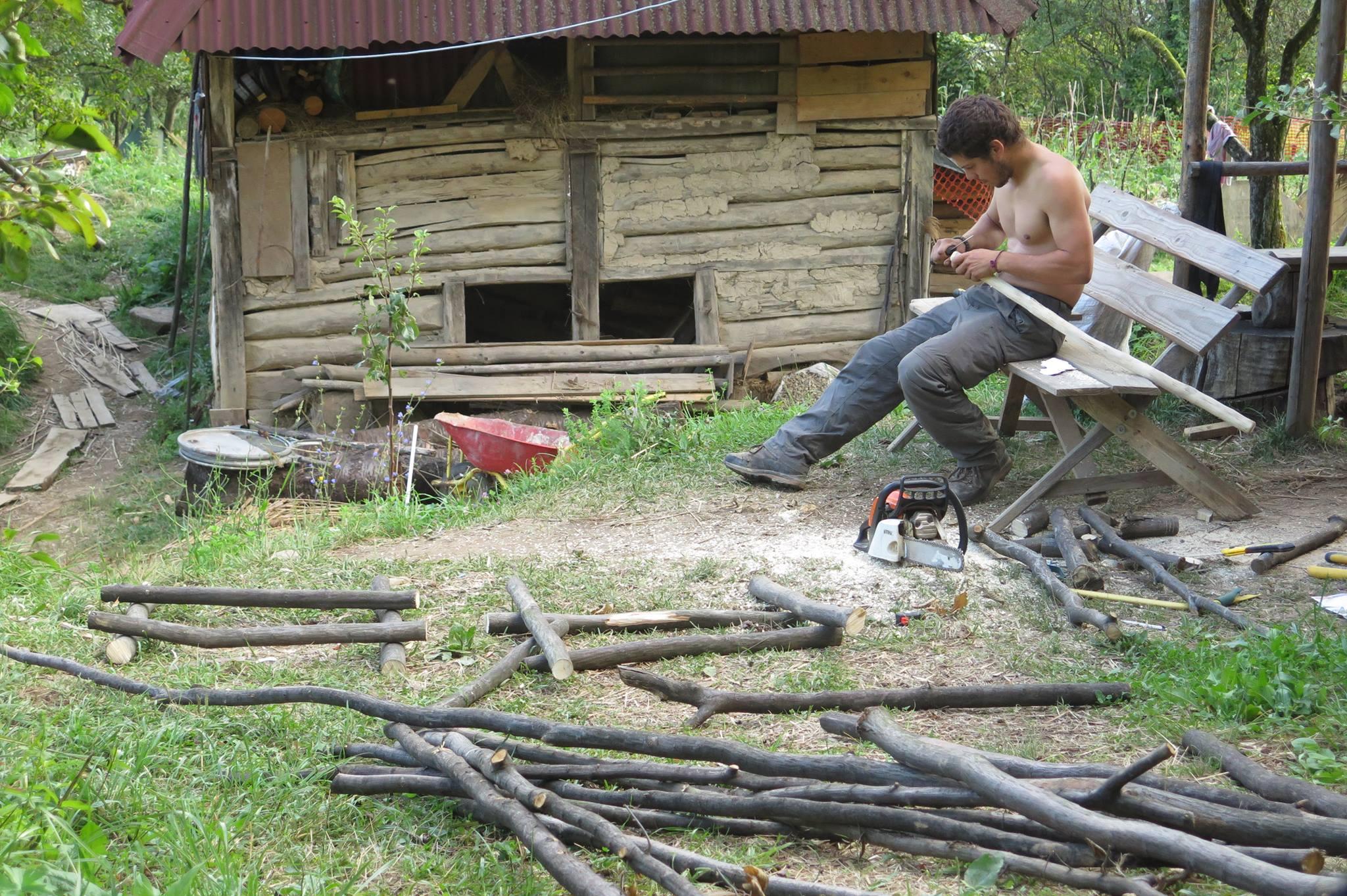 Je commence la fabrication d'un fauteuil avec des branches d'hêtre.