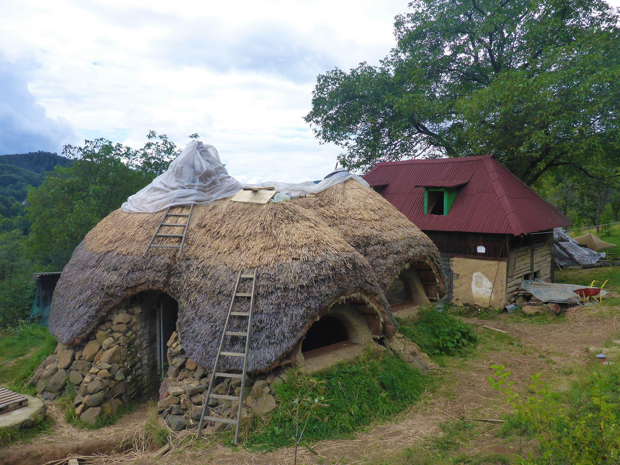 Bienvenue à Baza Ulmu, une école de permaculture en construction.