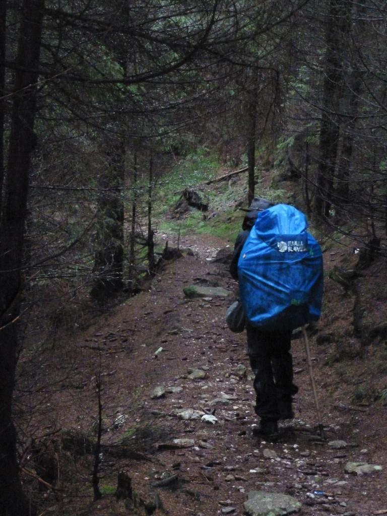 Une longue marche d'approche dans des forêts trempées et désertes avant d'arriver au massif des Fagaras