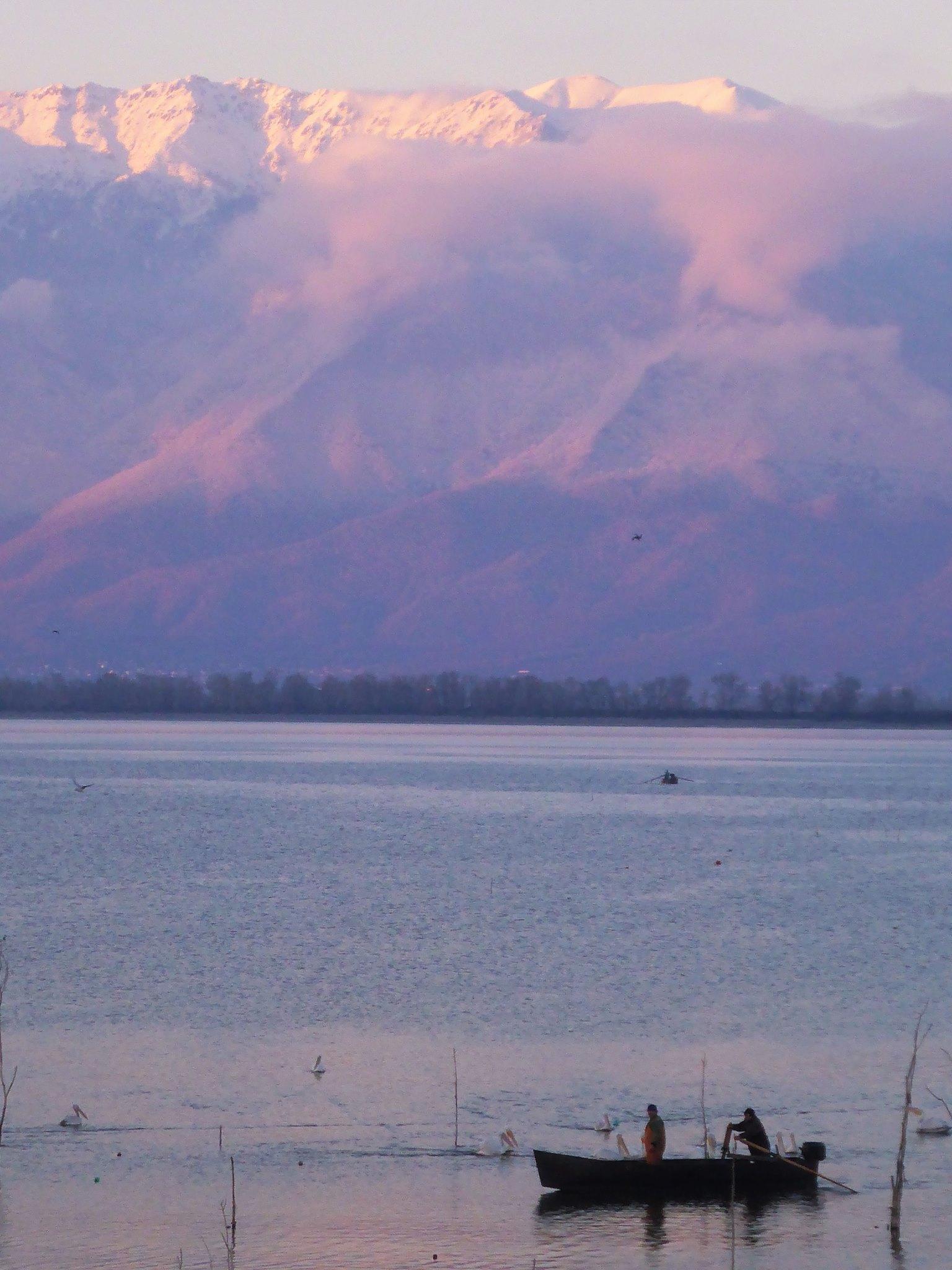 Je dors dans une petite cabane de pêcheur près du lac Kerkini. Des dizaines d'espèces d'oiseaux de toutes tailles vivent autour de celui-ci