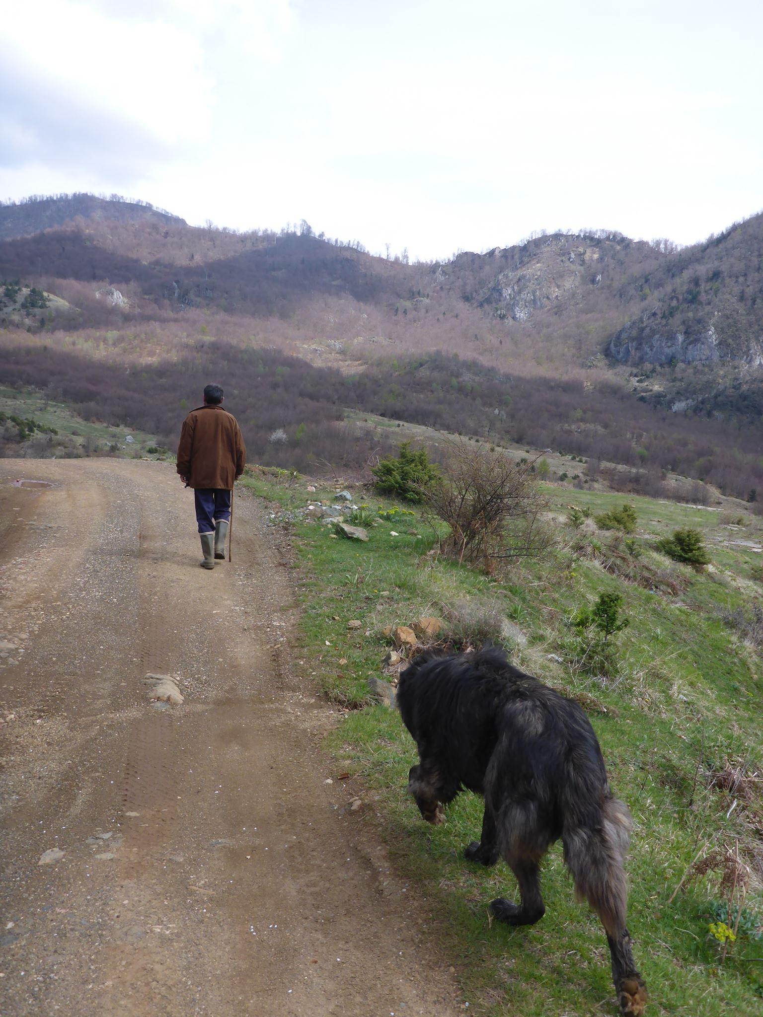 Un berger et son énorme chien me guident quelques kilomètres dans les montagnes