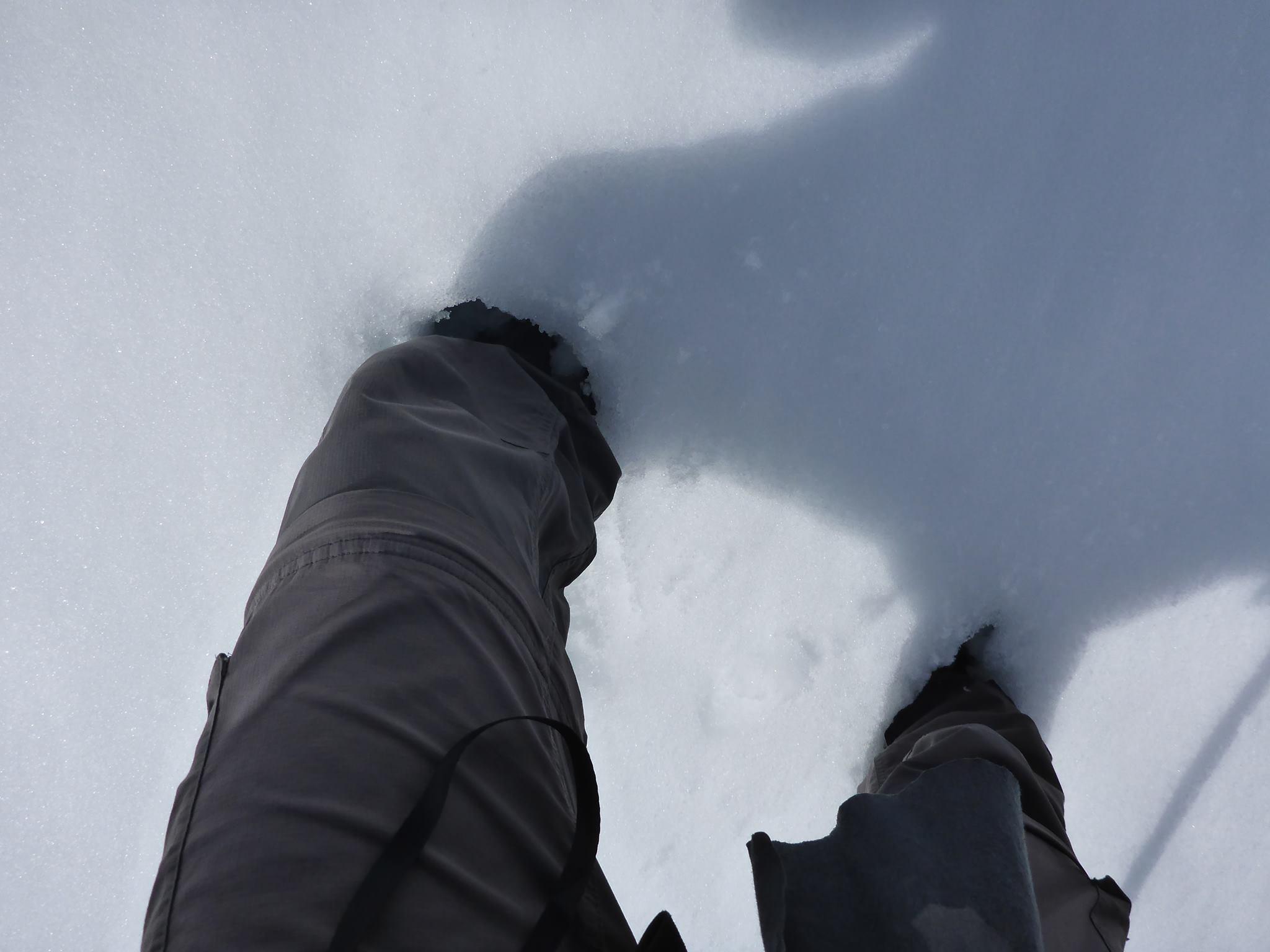 Moi qui avait cru en avoir fini avec la neige !