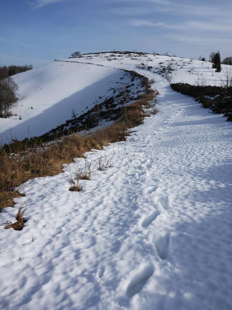 C'est de la neige de fonte pas agréable du tout pour marcher
